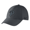 Cover Image for Nike Adult's Swoosh Flex Hat Script P - Grey