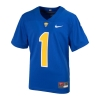 Cover Image for Nike Youth Boys Jersey Replica Panther Head - Royal